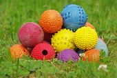 stock photo of toy dogs  - Ball toy for dogs still life objects.