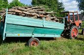 stock photo of tractor-trailer  - Tractor with trailer full loaded with tree wood firewood logs drive near forest - JPG