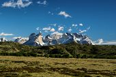 picture of pain-tree  - Panoramic view of snowy peaks and grassy meadows in Torres del Paine National Park - JPG