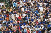 Wrigley Field Crowd