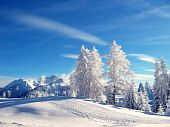stock photo of winter landscape  - gorgeous view of a winter landscape cover with snow - JPG