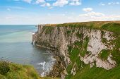 stock photo of cliffs  - Bempton Cliffs Yorkshire England showing rugged coastline of chalk cliffs - JPG