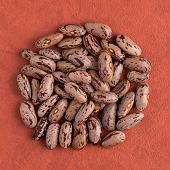 stock photo of pinto bean  - Top view of circle of pinto beans against red vinyl background - JPG
