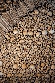 foto of catacombs  - Background made of human bones and skulls - JPG