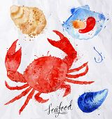 image of clam  - Set watercolor drawn seafood - JPG