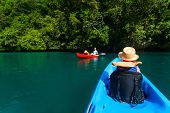 picture of paddling  - Family with kids paddling on colorful kayaks at mangroves during summer vacation - JPG