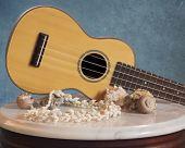 picture of ukulele  - A soprano - JPG