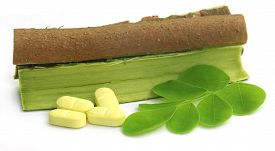 foto of malunggay  - Moringa leaves and bark with pills over white background - JPG