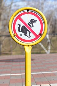 foto of pooping  - A sign in a park for no poop with the icon of a dog pooping - JPG