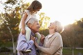 Grandparents Giving Granddaughter A Shoulder Ride In Park poster