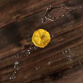 Slice A Lemon In The Air In A Stream Of Water, Splashes And A Drop And Splashes Around poster
