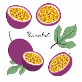 Set Of Passion Fruit Isolated On White. Vector Illustration. poster
