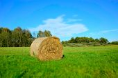 One Hay Bale Lying On A Green Meadow, Forest And White Cloud On Blue Sky - Blurry And Contrasting Co poster