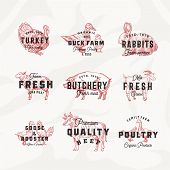 Retro Cattle And Poultry Vector Logo Templates Set. Hand Drawn Vintage Domestic Animals And Birds Sk poster