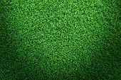 Grass Texture Or Grass Background. Green Grass For Golf Course, Soccer Field Or Sports Background Co poster