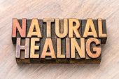natural healing word abstract in vintage letterpress wood type printing blocks poster