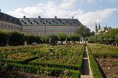 pic of regnitz  - The rose garden in bamberg the garden of the new residenz - JPG