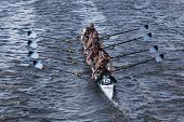 Green Lake Crew races in the Head of Charles Regatta