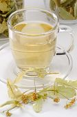 pic of lime-blossom  - Lime Blossom Tea in a glass cup - JPG