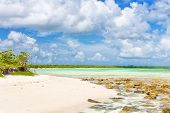 stock photo of coco  - Deserted tropical beach at Cayo Coco  - JPG