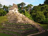 stock photo of mayan  - Mayan Pyramid ruins in Palenque - JPG
