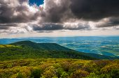 View Of The Blue Ridge And Shenandoah Valley From Stony Man Mountain In Shenandoah National Park, Va
