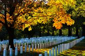foto of arlington cemetery  - Arlington National Cemetery in Autumn - JPG