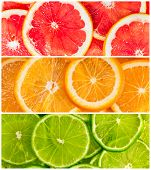 picture of orange peel  - Background with citrus - JPG