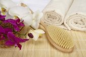 Wellness - Bath Brush, Folded And Rolled Towels