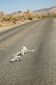 foto of h20  - A lost hiker dies of thirst on a deserted desert road inches away from a bottle of water - JPG