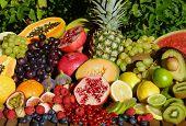image of papaya fruit  - Tropical organic fruits - JPG
