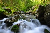 picture of cataracts  - Mountain creek in the national park Sumava - JPG