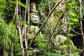 picture of lichenes  - Lichen growth on stone and Buddha at the mountain - JPG