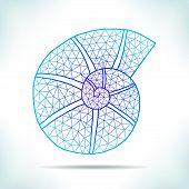 image of interpreter  - Geometric blue shell - JPG