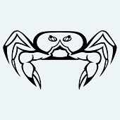 picture of craw  - Silhouette crab isolated on white background - JPG