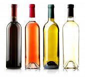 picture of merlot  - Wine bottles in row isolated on white - JPG