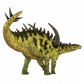 stock photo of herbivore  - Gigantspinosaurus was a herbivorous Stegosaur dinosaur that lived in the Jurassic Age of China - JPG