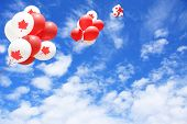 Canadian maple leaf flag balloons in the sky for Canada day.  poster