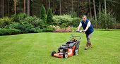 pic of grass-cutter  - Senior man mowing the lawn - JPG