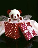 Cute Teddy In Box poster