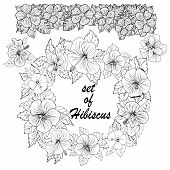 Hand Drawn Collection Of Tropical Flowers. Set Of Hibiscus Exotic Tropic Botany Leaves And Flowers.  poster