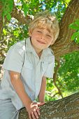 stock photo of happy kids  - Smiling young boy sitting in a tree - JPG