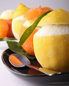 pic of sorbet  - orange and lemon sorbet - JPG
