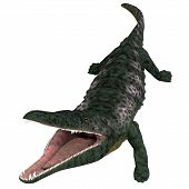 Archegosaurus Amphibian Head 3d Illustration - Archegosaurus Was A Carnivorous Amphibian That Lived  poster