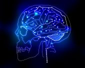 circuit human brain background