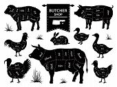 Butcher Diagrams. Animal Meat Cuts, Cow Pig Rabbit Lamb Rooster Domestic Animals Silhouettes. Vector poster