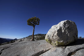 foto of errat  - Erratic boulders were formed by glacial activity in Yosemite National Park - JPG