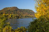 stock photo of winona  - Fall color trees - JPG
