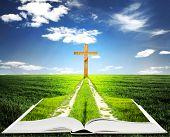 stock photo of bible story  - Open bible with grass and a way walking towards a cross - JPG