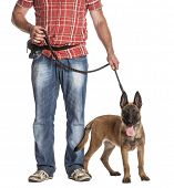 pic of belgian shepherd  - Man holding a leashed and panting Belgian Shepherd against white background - JPG